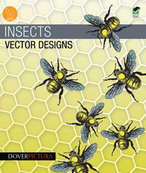 Insects Vector Designs