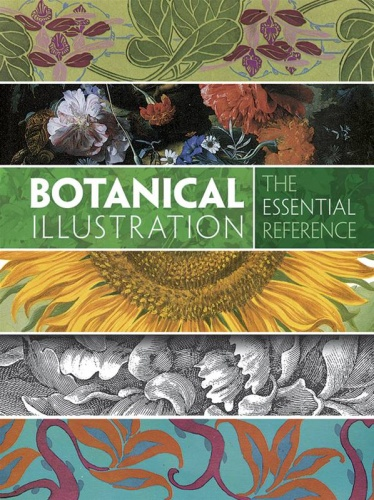 Botanical Illustration : The Essential Reference