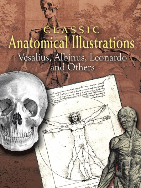 Classic Anatomical Illustrations